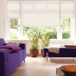 magnolia roller blinds