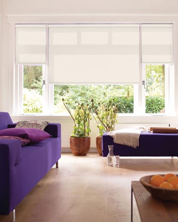 magnolia roller blinds