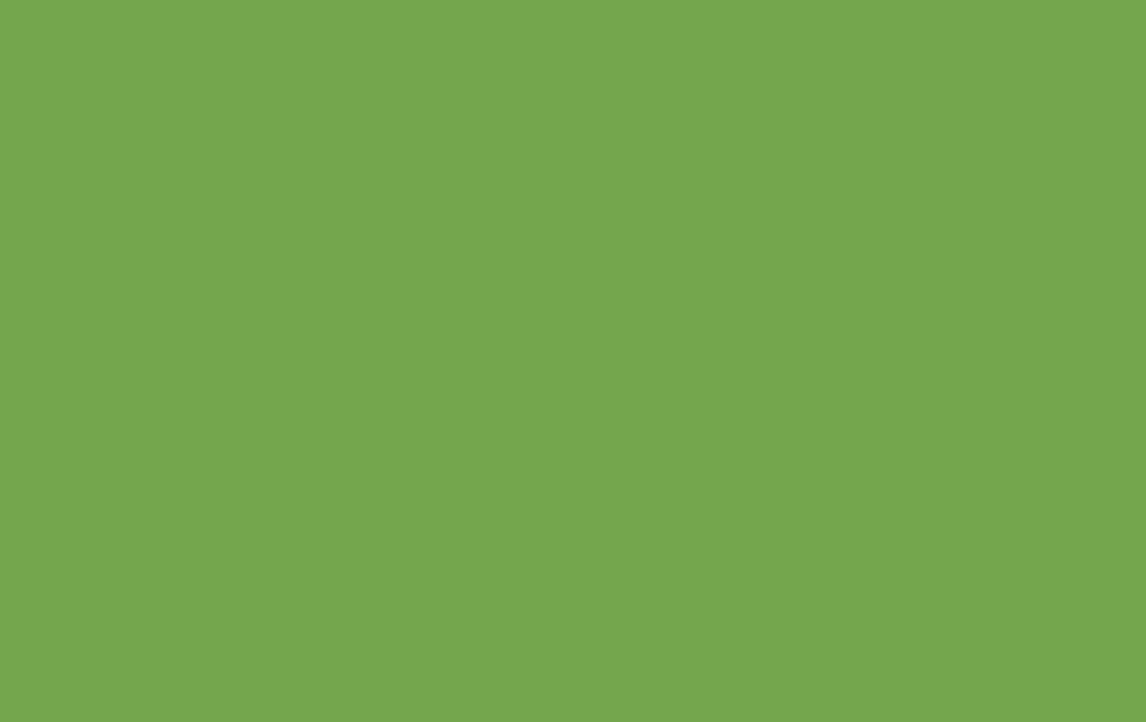 Cheapest Blinds Uk Ltd Bright Green Roller Blind