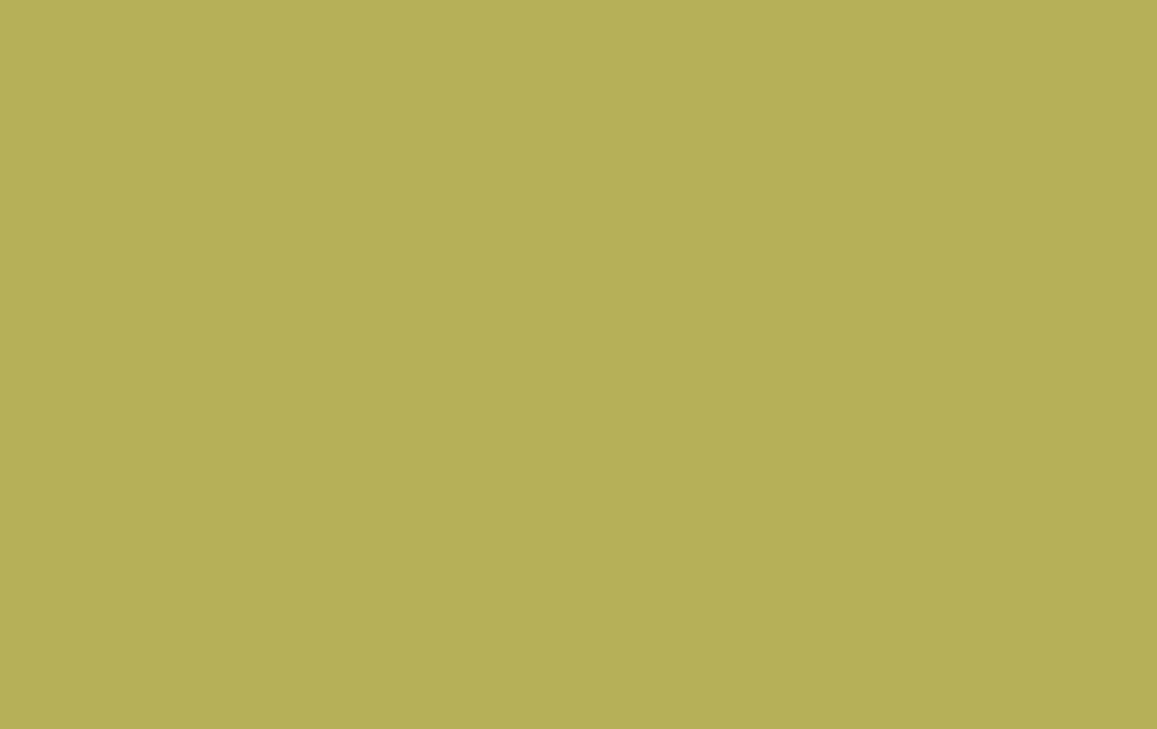 Cheapest Blinds UK Ltd Lime Green Vertical