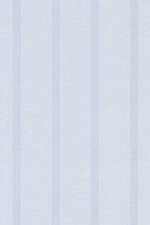 Sheer White Stripes Roller Blind Fabric Sample