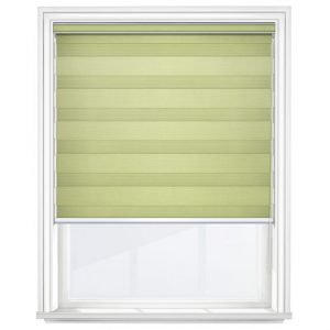 Pistachio Day and Night Blinds Closed